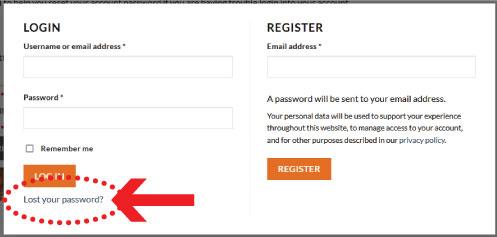lost password popup